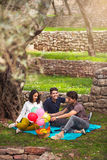 Three young people on picnic sitting on blanket under the olive Royalty Free Stock Image