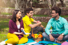 Three young people on picnict under the olive trees Royalty Free Stock Photography
