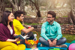 Three young people on picnicunder the olive trees Royalty Free Stock Photography