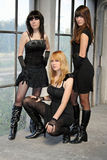 Three young and pretty girls. In the black minidress Royalty Free Stock Images
