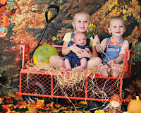 Three Young Siblings in the Fall Stock Image