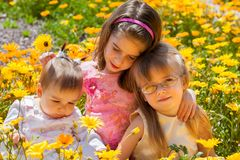 Three Young Sisters in a Field of African Daisies the Oldest Has. Three young sisters sit in a field of yellow and orange African Daisies. The oldest sibling has royalty free stock images