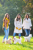 Three young woman with their pet dogs Stock Image