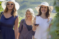 Three young woman walking in vineyard during summer day. Royalty Free Stock Photography