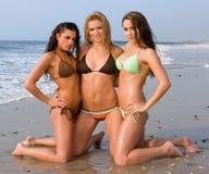 Three Young Women in a Bikini. Three Beautiful Young Women in a Bikini on the beach Royalty Free Stock Photos
