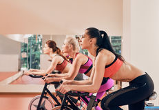 Three Young women on exercise bikes at gym Stock Image