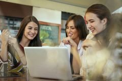 Three young women having conversation in cafe. Royalty Free Stock Photos
