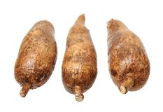 Three yuca roots Stock Photos
