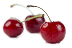 Three yummy cherries Stock Photo
