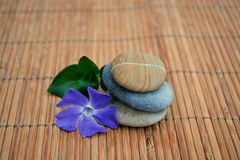 Three zen stones with flower on bamboo reed background Stock Photo