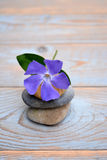 Three Zen stones on used wood with purple flower Royalty Free Stock Photography