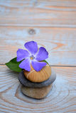 Three Zen stones on used wood with purple flower. Three zenstones on old wood planks with a purple flower Stock Photo