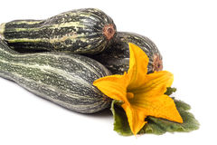 Three zucchini with leaf and flower isolated on white background Stock Images