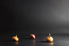 Threeonions on a black background Royalty Free Stock Photography