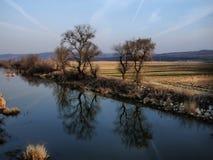 Threes-Reflexion Stockbild