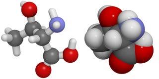Threonine (Thr, T) molecule Royalty-vrije Stock Afbeelding