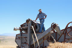 Threshing wheat Stock Images