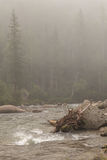 Thresholds on the foggy mountain river. Royalty Free Stock Photos