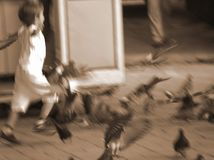 Thrill of life. Child running through a flock of pigeons - blured royalty free stock images