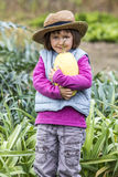 Thrilled young child loving to harvest organic squash from garden Stock Photos