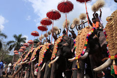 Thrissur Pooram. Is called 'the pooram of all poorams' (festival). It is the biggest of all poorams held in Kerala state, India.The , is celebrated every year Royalty Free Stock Photography