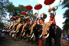 Thrissur Pooram royalty-vrije stock afbeelding