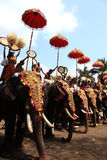 Thrissur Pooram Royalty Free Stock Photography