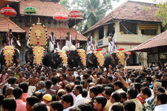 Thrissur Pooram festiwal Zdjęcie Royalty Free