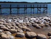 Thrombolites at Lake Clifton, Western Australia Stock Images