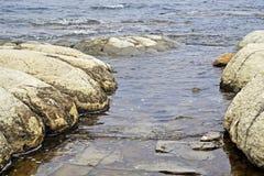 Thrombolites Zeldzame Fossielen 3 oude 5 miljard jaar Stock Foto's
