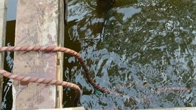 Throw the ends of the rope into the water. Metaphor saying,   means hide traces of crime stock video footage