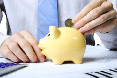 Throwing coin into a piggy bank Stock Image