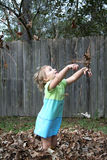 Throwing Fall Leaves Stock Photography