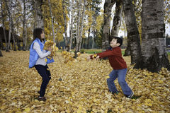 Throwing leaves. Stock Photo