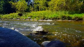 Throwing rocks into beautiful flowing river water with riverside forest. Rocks splash into sunny riverbank trees