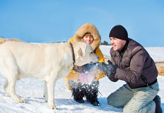 Throwing snow Royalty Free Stock Photos