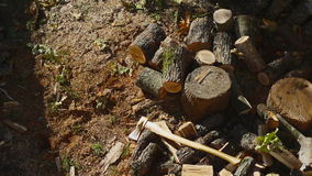 Throwing Wood On A Pile 01 stock footage