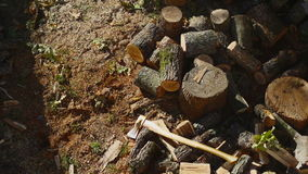 Throwing Wood On A Pile 02 stock video footage