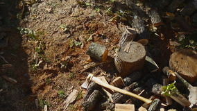 Throwing Wood On A Pile stock footage