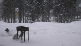 Thrown brazier, bbq costs in the spring forest. Lightly falling snow on a winter day. slow motion. 3840x2160. Thrown brazier, bbq costs in the spring forest stock video