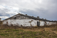 The thrown cowshed of the Soviet period Royalty Free Stock Photo