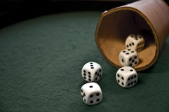 Thrown dices Stock Image