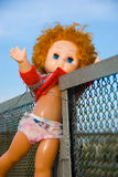 Thrown out doll. The old doll which has been thrown out has got stuck in a fence Royalty Free Stock Image