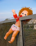 Thrown out doll. The old doll which has been thrown out has got stuck in a fence Stock Photography