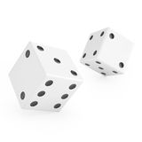 Thrown white dice Stock Image