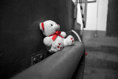 Thrown white Teddy bear in a slum. Thrown white Teddy bear in the slum sits on the pipes Royalty Free Stock Image