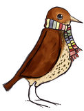 Thrush and scarf. Song thrush bird wearing a scarf Royalty Free Stock Photography