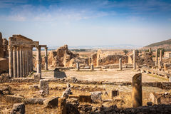 Thuburbo majus, Tunisia a few of the remaining pillars which onc Stock Photo