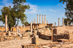 Thuburbo majus, Tunisia a few of the remaining pillars which onc Royalty Free Stock Images