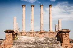 Thuburbo majus, Tunisia a few of the remaining pillars which onc Stock Image